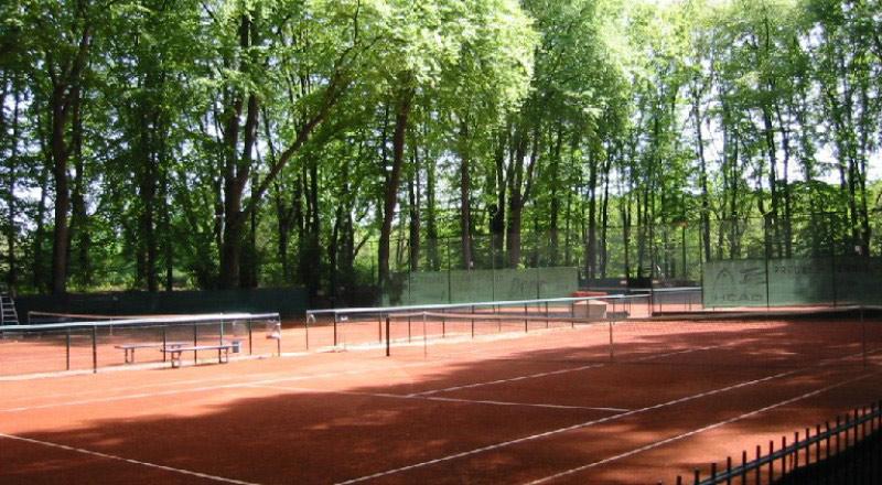 berliner-tennisclub-rotgold-verein